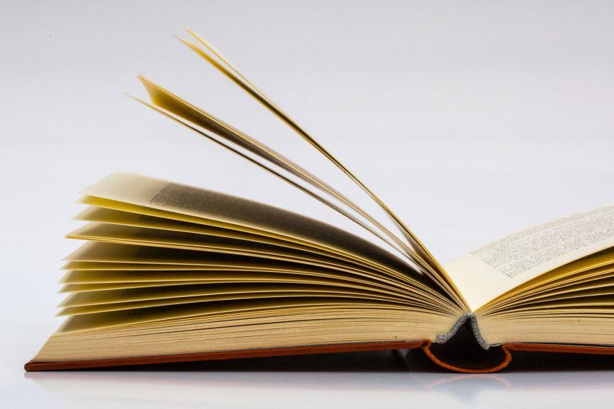 Šta je kvalitetno obrazovanje? (Dužnosti, prava, odgovornosti.)