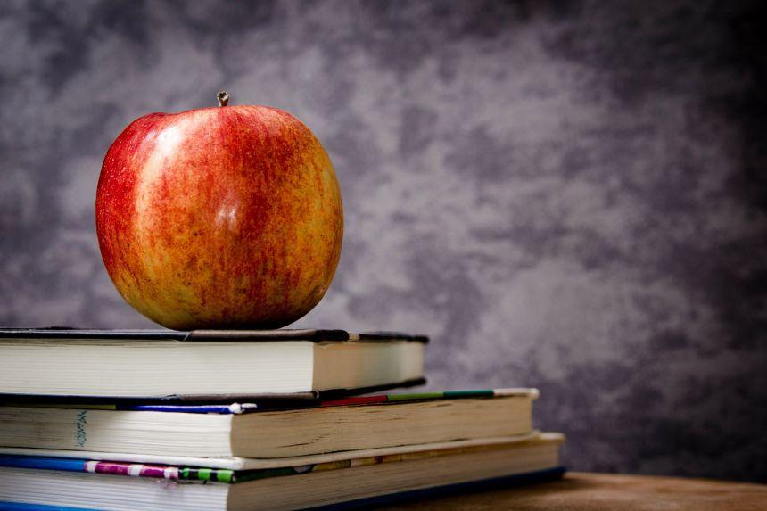 Kritički pristup pitanju odnosa porodice i javnog obrazovanja